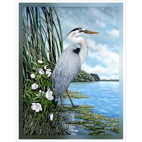Great Blue Heron 36 x 48 Canvas